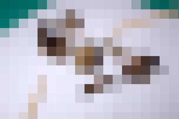 グロ画像(モザイク入り)